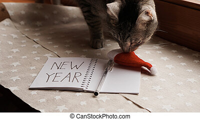 Notebook with pen to write goals of new year - with cat