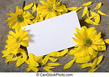 Notecard with Daises