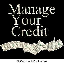 notes, gérer, isolé, crédit, américain, mots, ton