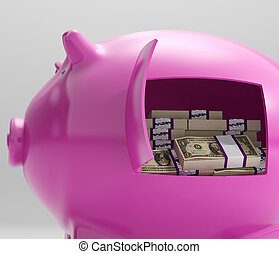 Notes In Piggy Shows Savings And Investment