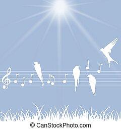 notes, musique, oiseaux, illustration