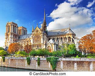 notre, 巴黎, 婦女, cathedral., france., paris., de