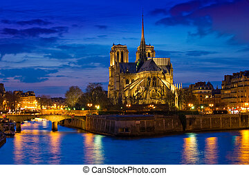 Notre Dame Cathedral at night in Paris France