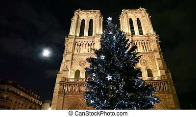 Notre Dame Cathedral, in front of christmas tree, behind...
