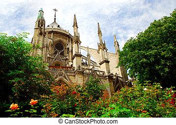 Notre Dame de Paris, garden view with blooming roses