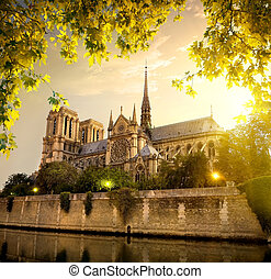 Notre Dame in France - Notre Dame in Paris at sunset, France