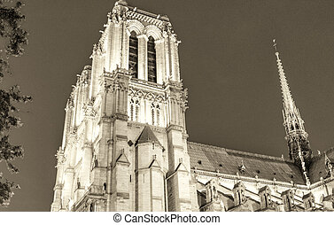 Notre Dame view at night, Paris