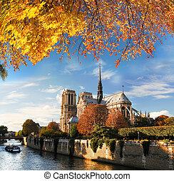 notre paniusia, w, paryż, francja