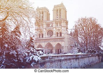 notre-senhora, catedral, após, nevada, em, paris, frança