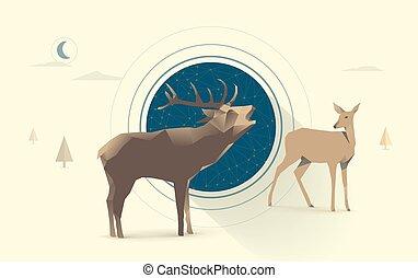 notte, cervo, amore