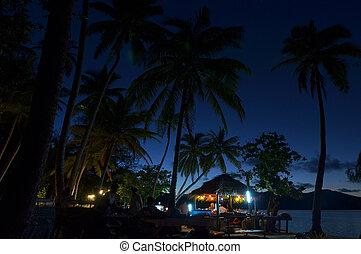 notte, evento, su, uno, isola tropicale, in, figi