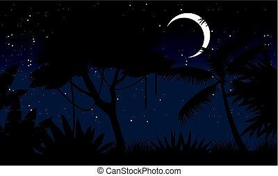notte, foresta, con, luna, scenario