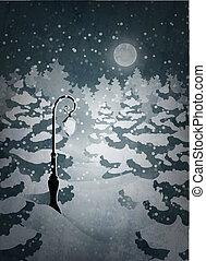 notte, foresta, inverno