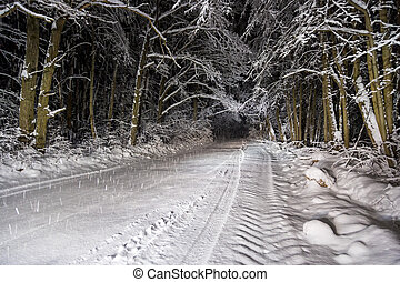 notte, foresta, strada, inverno