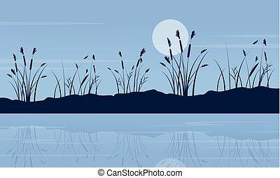 notte, lago, scenario, con, luna