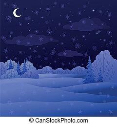 notte, paesaggio, foresta, inverno