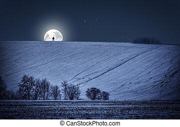 notte, paesaggio inverno, luna