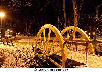 notte, parco