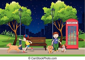 notte, parco, persone