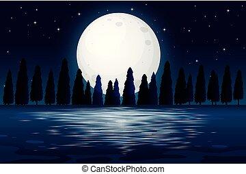 notte, silhouette, scena, foresta