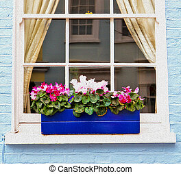 notting hill area in london england old suburban and flowers