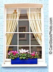 notting hill area in suburban and flowers