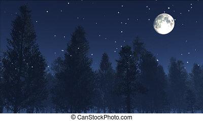 noturna, estrelas, 2