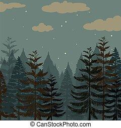 noturna, floresta, pinho, tempo
