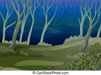 noturna, floresta, tempo