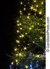 noturna, luzes, árvore natal