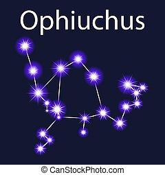 noturna, ophiuchus, estrelas, céu, constelação, ilustração