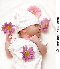nourrisson, pâquerettes, couverture, dormir, bébé, blanc, girl