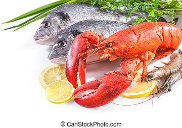 nourriture, blanc, mer, fond