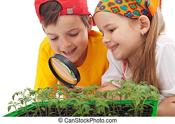 nourriture, gosses, grandir, apprentissage