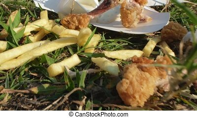 nourriture, jeûne, vert, problems., herbe, restes, ambiant, pique-nique