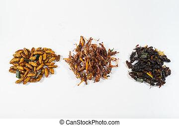 nourriture, protéine, frit, riche, insects.