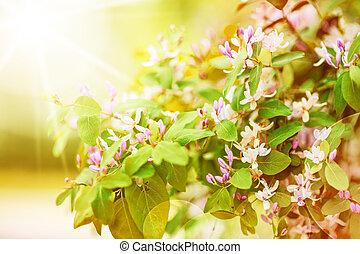 nouveau, feuilles, fleurs, vert, frais
