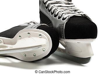 Ligen Eishockey