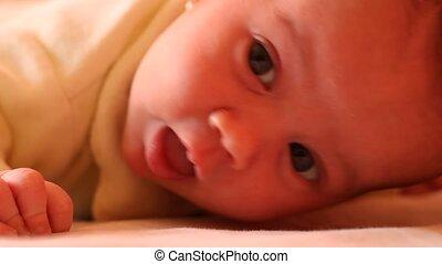 nouveau né, éveillé