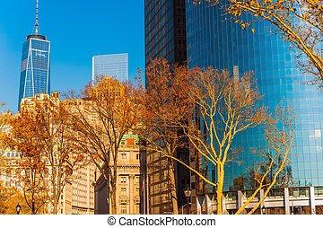 nouveau, ville, york, automne