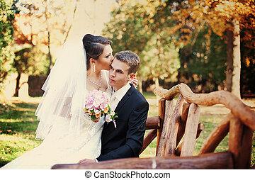 nouveaux mariés, asseoir, banc bois, automne, original, jardin