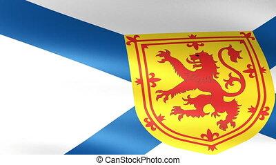 Nova Scotia Flag Waving