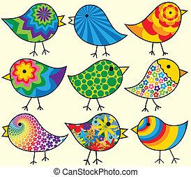nove, pássaros, coloridos