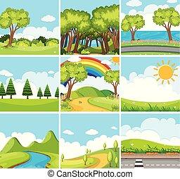 nove, verde, cenas, árvores, natureza