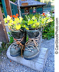 Novelty flower planter made of hiking boots, Emerald Lake, Yoho National Park, British Columbia, Canada