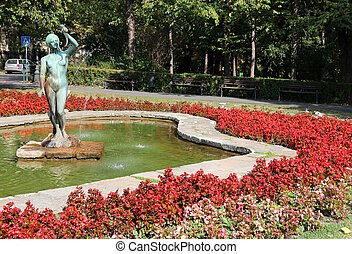 Novi Sad, Serbia - city in the region of Vojvodina. Flowers...