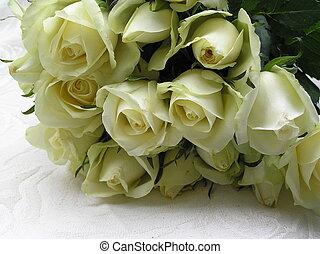 novia, rosas