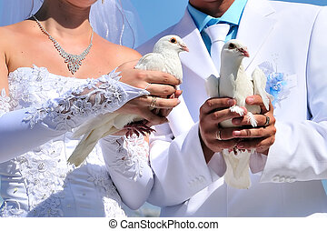 novia y novio, con, blanco, palomas