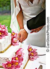 novia y novio, corte, pastel