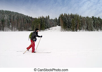 Novice Cross Country Skier - A cross country skier out on a...